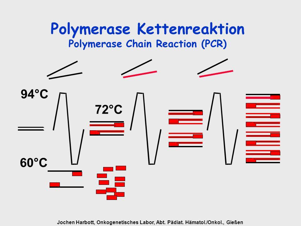 Jochen Harbott, Onkogenetisches Labor, Abt. Pädiat. Hämatol./Onkol., Gießen Polymerase Kettenreaktion Polymerase Chain Reaction (PCR) 94°C 60°C 72°C