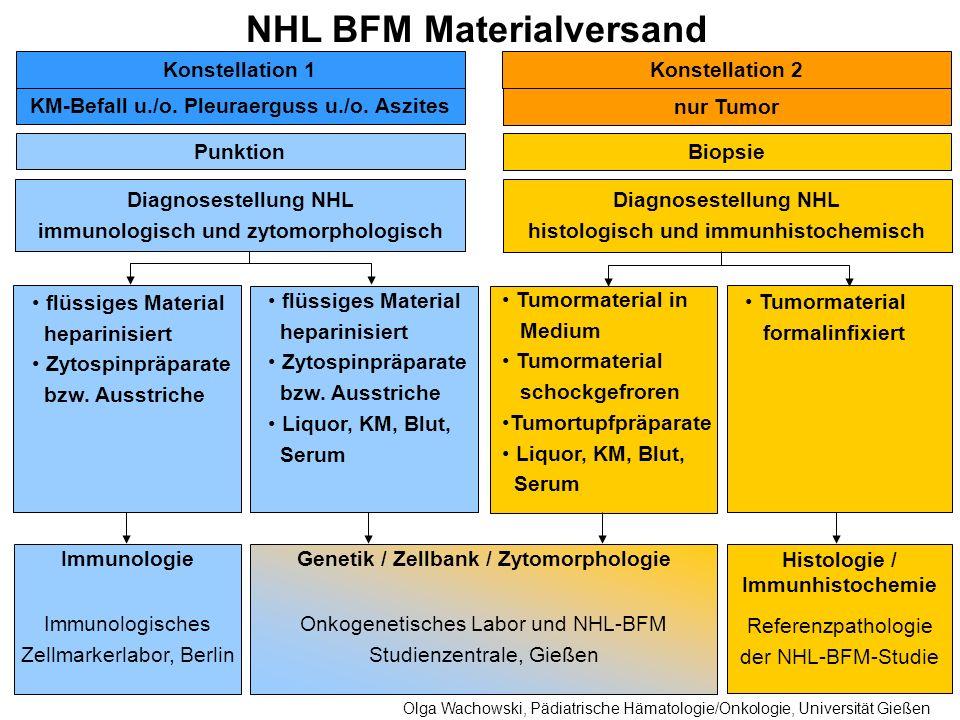 NHL BFM Materialversand KM-Befall u./o. Pleuraerguss u./o. Aszites nur Tumor Biopsie Punktion Diagnosestellung NHL immunologisch und zytomorphologisch