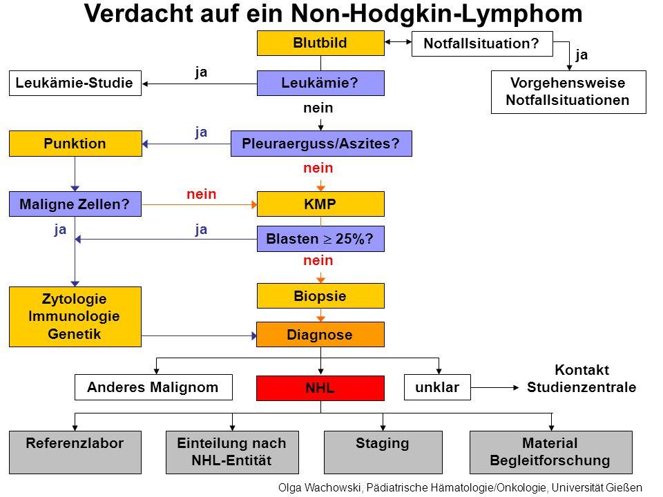 Therapie- gruppe Lymphoblastische Lymphome Reife B-Zell LymphomeALCL Lymphom- entität Lymphoblastische Lymphome der Vorläufer B- und Vorläufer T-Zellen Early-B-Zell- Lymphome (L1 oder L2 Morphologie, Oberflächen-Ig positiv) Burkitt-Lymphome, B-ALL Burkitt-ähnliche Lymphome Diffus großzellige B-Zell Lymphome Primär mediastinale (thymische) großzellige B-Zell Lymphome (PMLBL) Follikuläre Lymphome des Kindesalters Reife B-Zell Lymphome, nicht weiter klassifiziert Großzellige anaplastische Lymphome Derzeit aktuelles NHL-BFM Protokoll EURO-LB 02B-NHL BFM Rituximab und/ oder B-NHL BFM 04 ALCL 99 Definition der Therapiegruppen der NHL Olga Wachowski, Pädiatrische Hämatologie/Onkologie, Universität Gießen