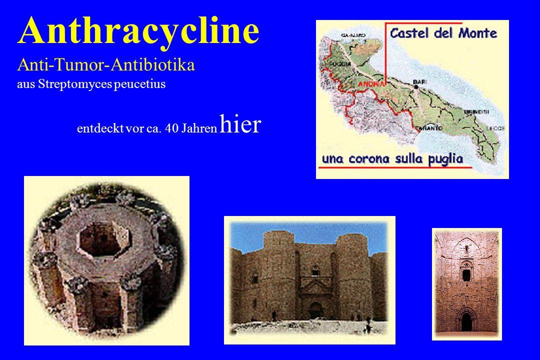 Anthracycline Anti-Tumor-Antibiotika aus Streptomyces peucetius entdeckt vor ca. 40 Jahren hier