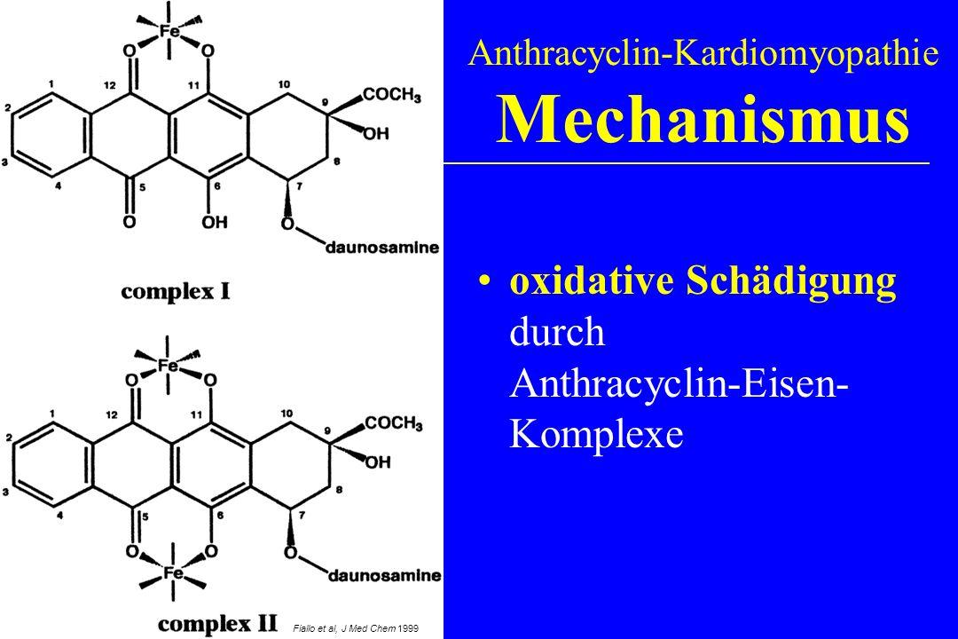 oxidative Schädigung durch Anthracyclin-Eisen- Komplexe Anthracyclin-Kardiomyopathie Mechanismus Fiallo et al, J Med Chem 1999