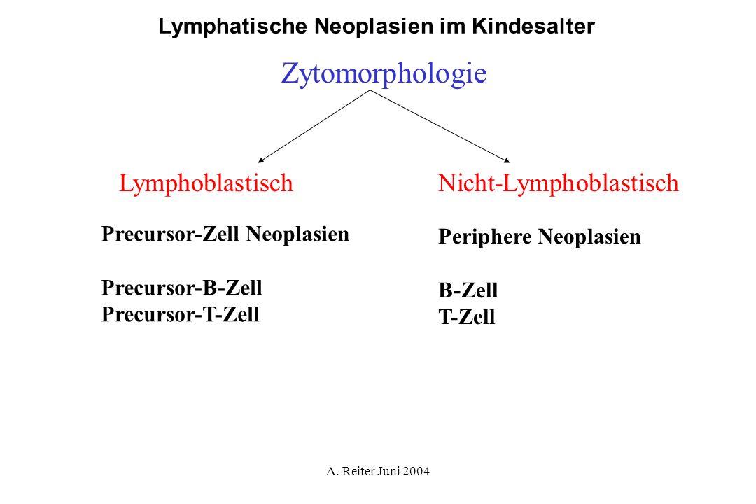 A. Reiter Juni 2004 Lymphatische Neoplasien im Kindesalter Zytomorphologie LymphoblastischNicht-Lymphoblastisch Precursor-Zell Neoplasien Precursor-B-