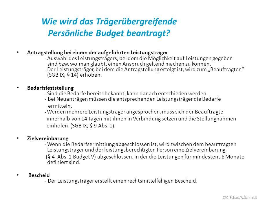 Wie wird das Trägerübergreifende Persönliche Budget beantragt? Antragstellung bei einem der aufgeführten Leistungsträger - Auswahl des Leistungsträger