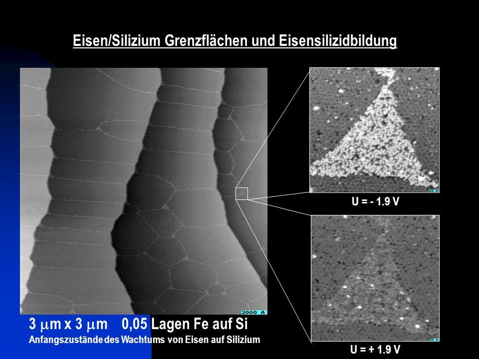 Eisen/Silizium Grenzflächen und Eisensilizidbildung 3 m x 3 m 0,05 Lagen Fe auf Si Anfangszustände des Wachtums von Eisen auf Silizium U = - 1.9 V U =