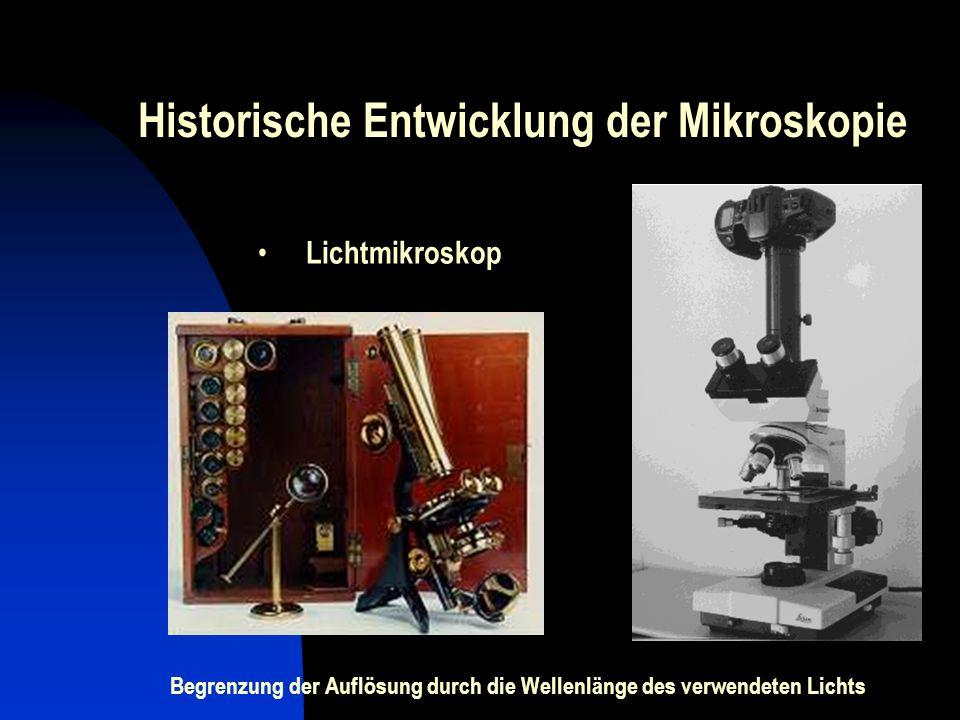Historische Entwicklung der Mikroskopie Lichtmikroskop Begrenzung der Auflösung durch die Wellenlänge des verwendeten Lichts