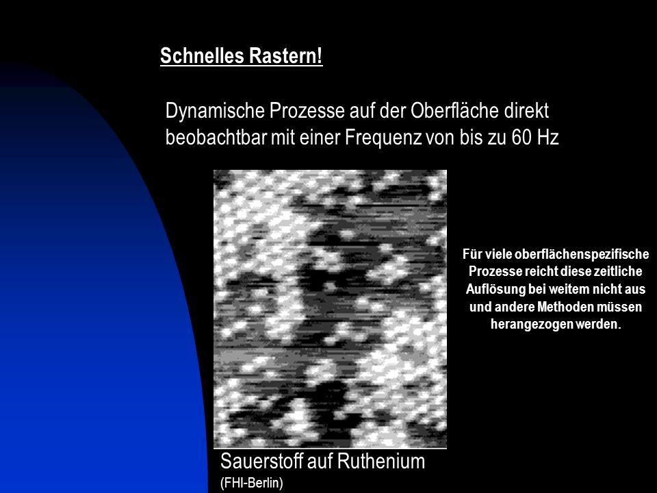 Konstant- Höhen-Modus Schnelles Rastern! Dynamische Prozesse auf der Oberfläche direkt beobachtbar mit einer Frequenz von bis zu 60 Hz Sauerstoff auf