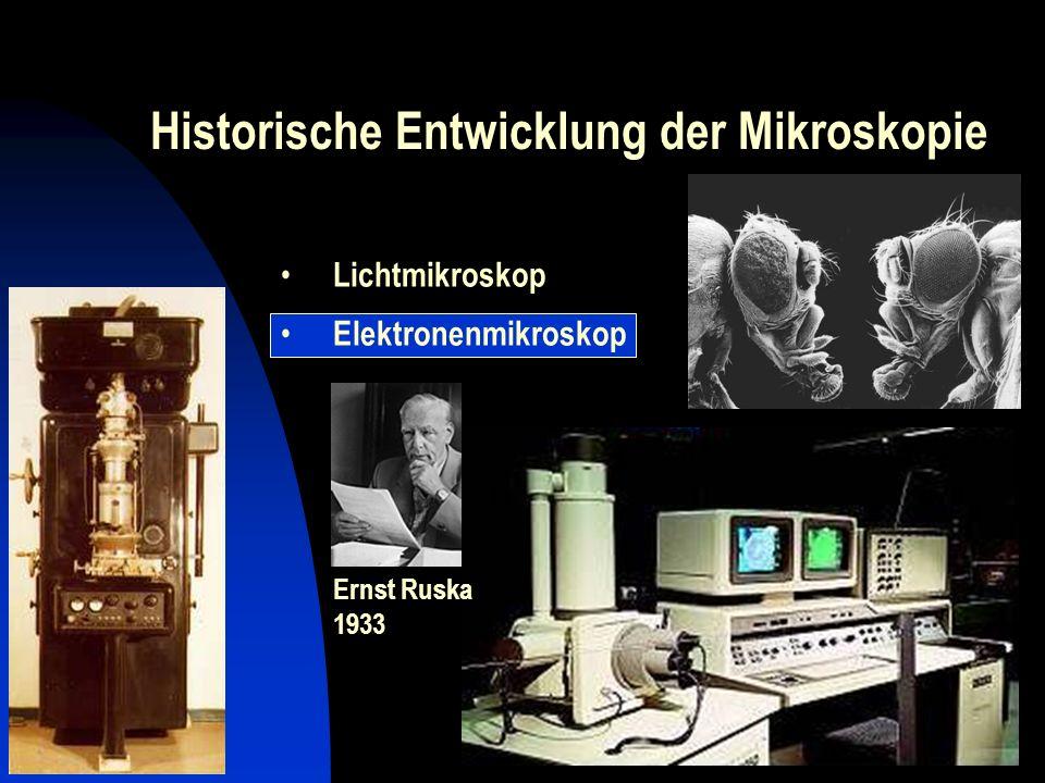 Historische Entwicklung der Mikroskopie Erstmals Abbildung einzelner Atome 1955.