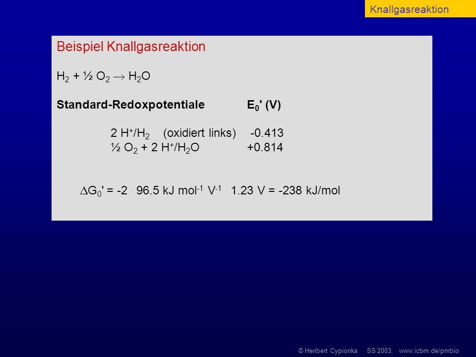© Heribert Cypionka SS 2003, www.icbm.de/pmbio Beispiel Knallgasreaktion H 2 + ½ O 2 H 2 O Standard-Redoxpotentiale E 0 ' (V) 2 H + /H 2 (oxidiert lin