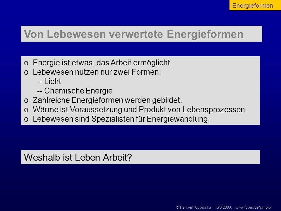 © Heribert Cypionka SS 2003, www.icbm.de/pmbio o Energie ist etwas, das Arbeit ermöglicht. o Lebewesen nutzen nur zwei Formen: -- Licht -- Chemische E