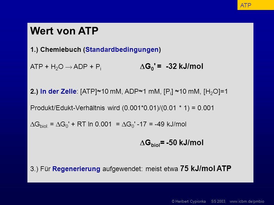 © Heribert Cypionka SS 2003, www.icbm.de/pmbio Wert von ATP 1.) Chemiebuch (Standardbedingungen) ATP + H 2 O ADP + P i G 0 ' = -32 kJ/mol 2.) In der Z