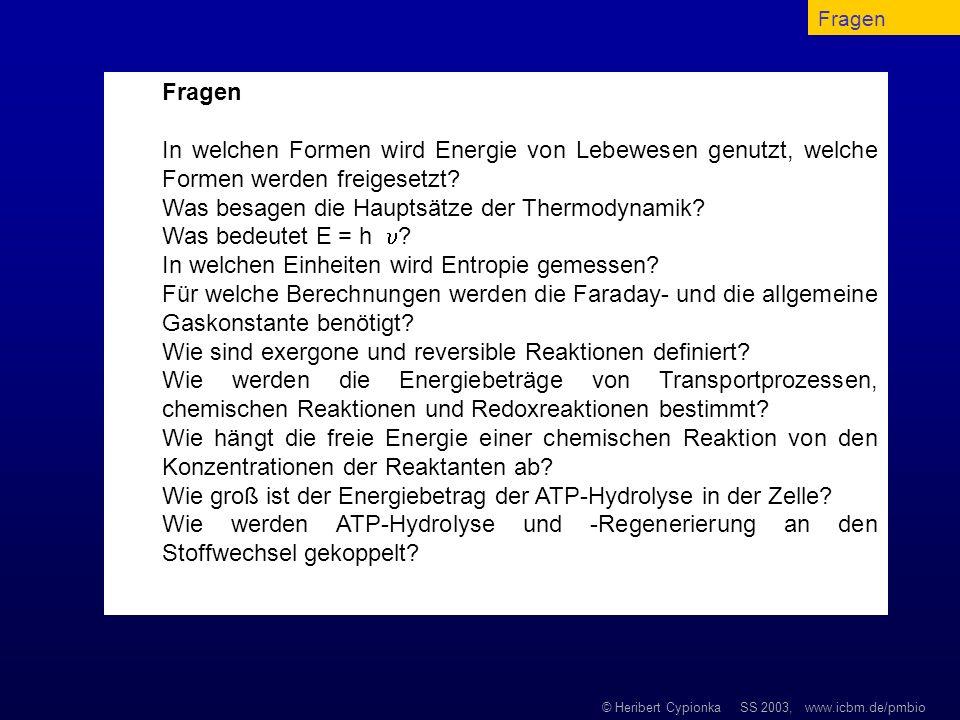 © Heribert Cypionka SS 2003, www.icbm.de/pmbio Fragen In welchen Formen wird Energie von Lebewesen genutzt, welche Formen werden freigesetzt? Was besa