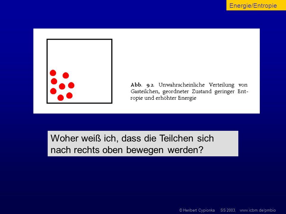 © Heribert Cypionka SS 2003, www.icbm.de/pmbio Woher weiß ich, dass die Teilchen sich nach rechts oben bewegen werden? Energie/Entropie