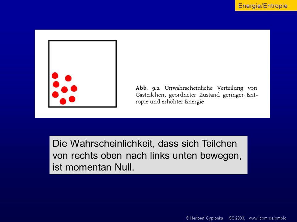 © Heribert Cypionka SS 2003, www.icbm.de/pmbio Die Wahrscheinlichkeit, dass sich Teilchen von rechts oben nach links unten bewegen, ist momentan Null.