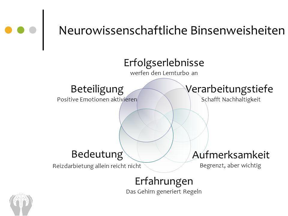 Neurowissenschaftliche Binsenweisheiten