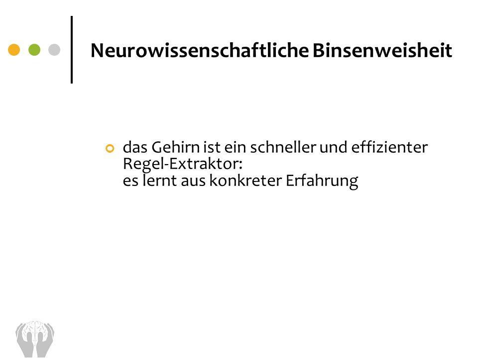 das Gehirn ist ein schneller und effizienter Regel-Extraktor: es lernt aus konkreter Erfahrung Neurowissenschaftliche Binsenweisheit