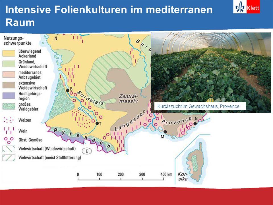 Größter Profiteur der EU-Agrarförderung * Österreich, Belgien, Dänemark, Finnland, Luxemburg, Niederlande, Portugal, Schweden Quelle: European Commission (2003 figures)