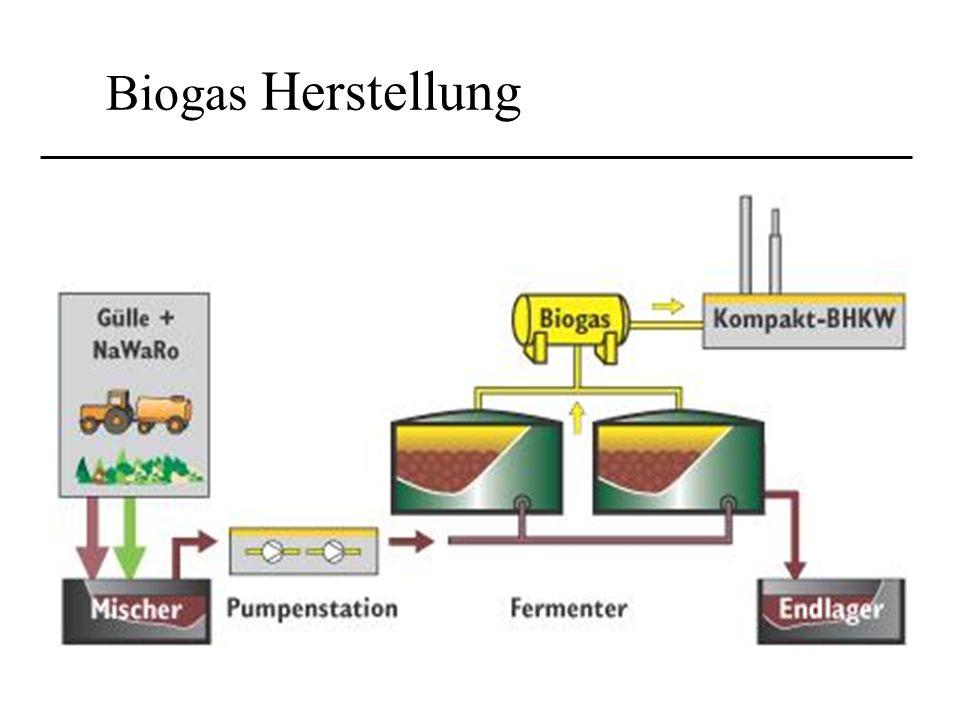 Biogas Herstellung