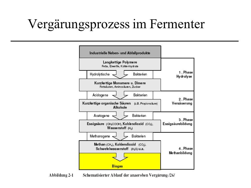 Vergärungsprozess im Fermenter