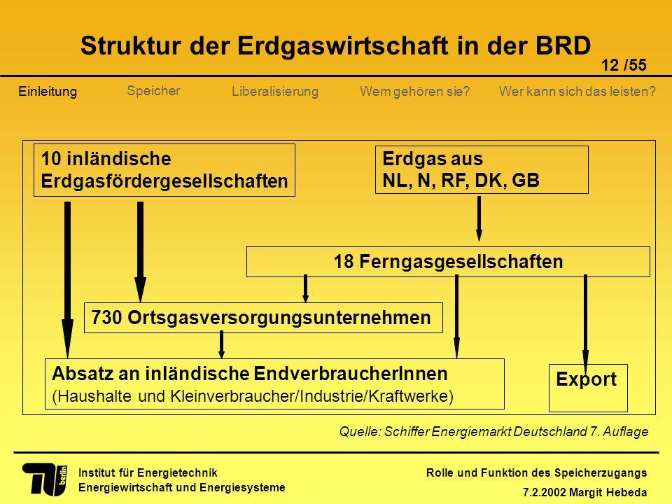 Rolle und Funktion des Speicherzugangs 7.2.2002 Margit Hebeda 12 /55 Institut für Energietechnik Energiewirtschaft und Energiesysteme Einleitung Liber