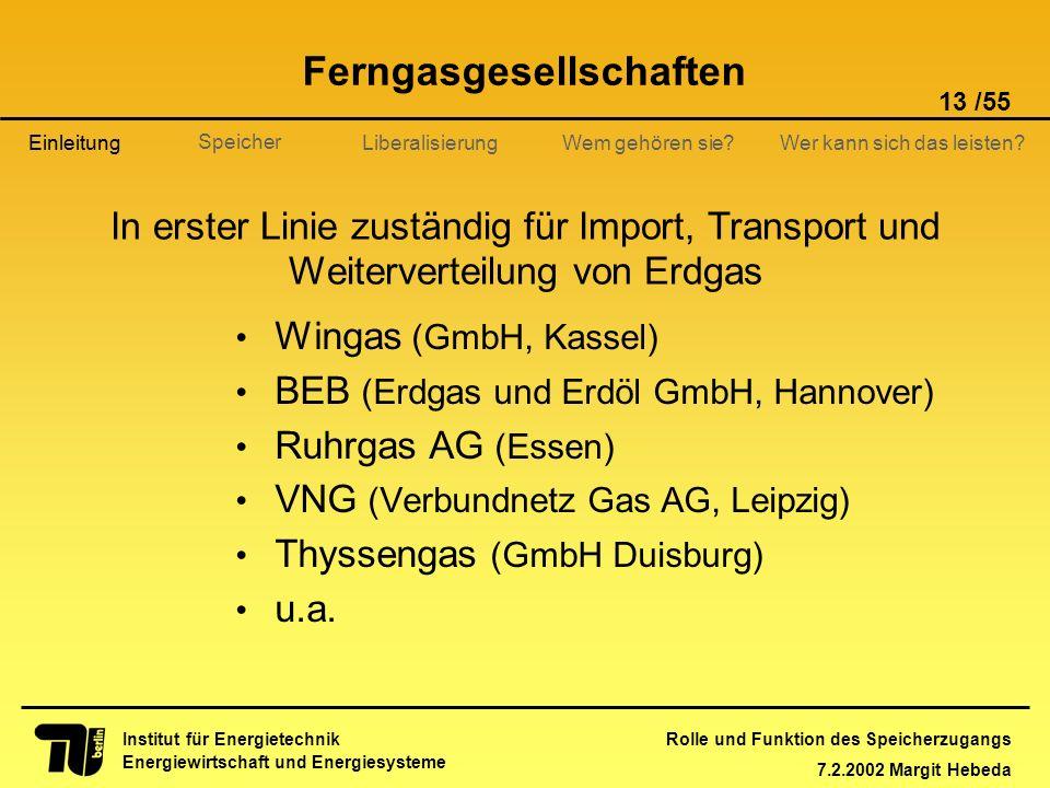 Rolle und Funktion des Speicherzugangs 7.2.2002 Margit Hebeda 13 /55 Institut für Energietechnik Energiewirtschaft und Energiesysteme Einleitung Liber