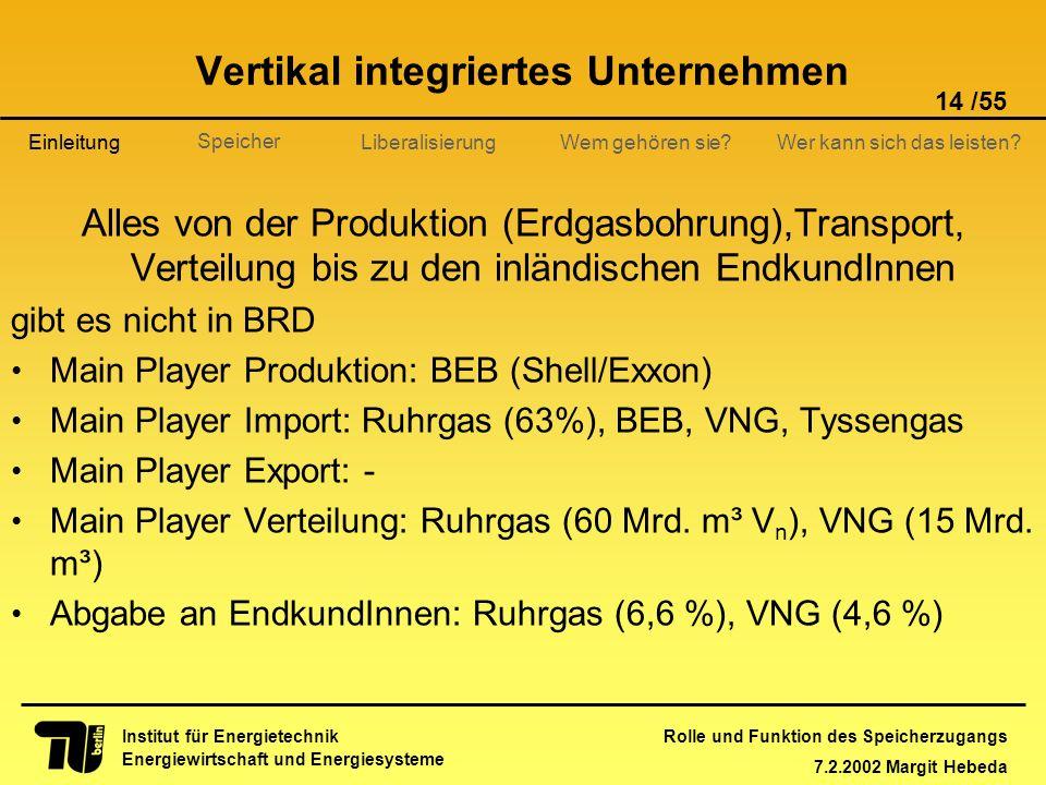 Rolle und Funktion des Speicherzugangs 7.2.2002 Margit Hebeda 14 /55 Institut für Energietechnik Energiewirtschaft und Energiesysteme Einleitung Liber
