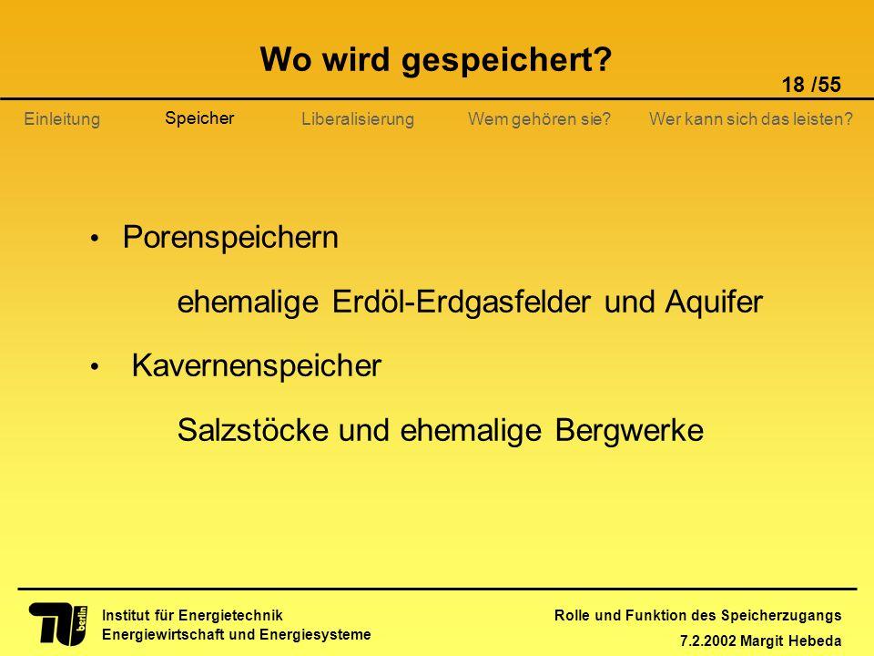 Rolle und Funktion des Speicherzugangs 7.2.2002 Margit Hebeda 18 /55 Institut für Energietechnik Energiewirtschaft und Energiesysteme Einleitung Liber