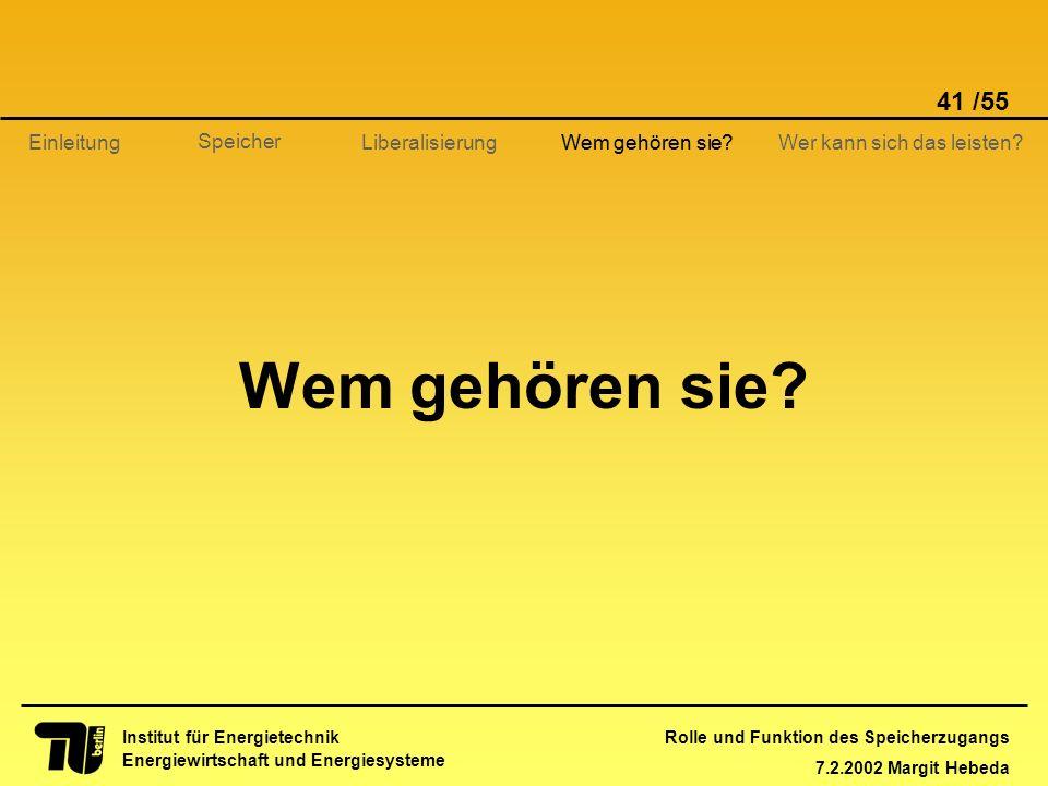 Rolle und Funktion des Speicherzugangs 7.2.2002 Margit Hebeda 41 /55 Institut für Energietechnik Energiewirtschaft und Energiesysteme Einleitung Liber