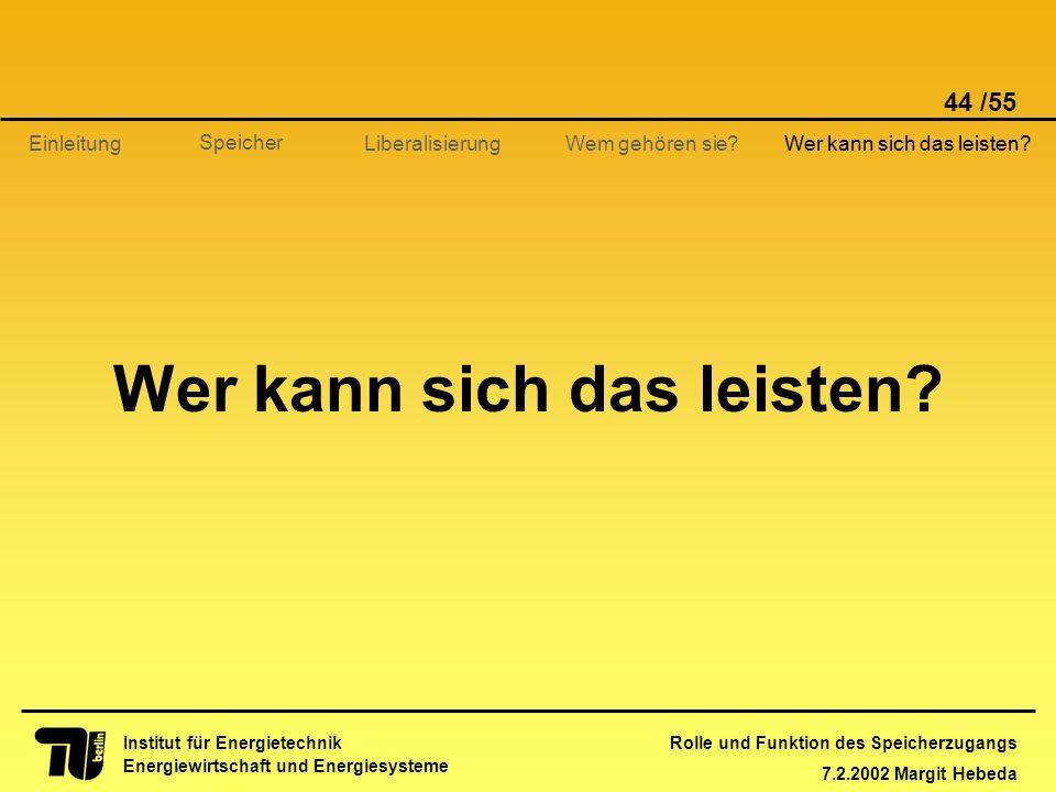 Rolle und Funktion des Speicherzugangs 7.2.2002 Margit Hebeda 44 /55 Institut für Energietechnik Energiewirtschaft und Energiesysteme Einleitung Liber
