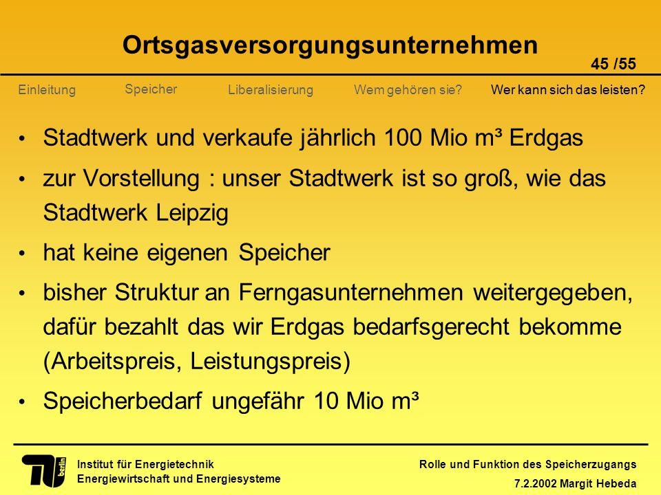 Rolle und Funktion des Speicherzugangs 7.2.2002 Margit Hebeda 45 /55 Institut für Energietechnik Energiewirtschaft und Energiesysteme Einleitung Liber