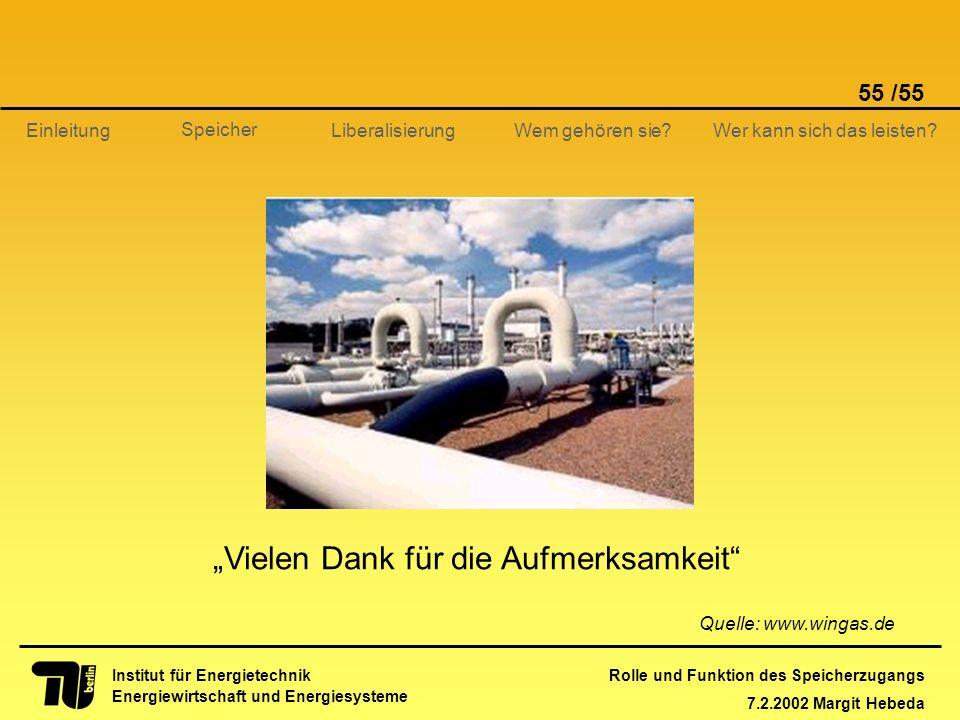 Rolle und Funktion des Speicherzugangs 7.2.2002 Margit Hebeda 55 /55 Institut für Energietechnik Energiewirtschaft und Energiesysteme Einleitung Liber