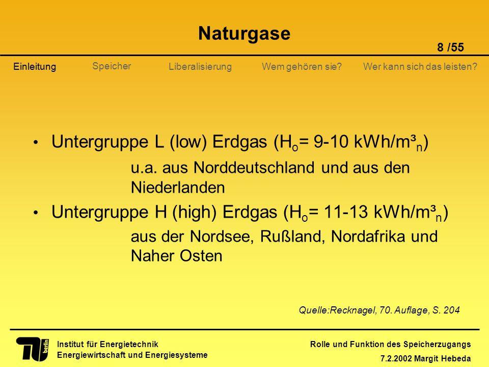 Rolle und Funktion des Speicherzugangs 7.2.2002 Margit Hebeda 8 /55 Institut für Energietechnik Energiewirtschaft und Energiesysteme Einleitung Libera