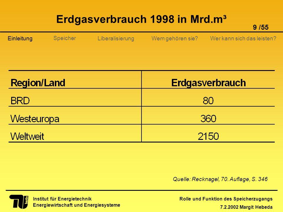 Rolle und Funktion des Speicherzugangs 7.2.2002 Margit Hebeda 9 /55 Institut für Energietechnik Energiewirtschaft und Energiesysteme Einleitung Libera