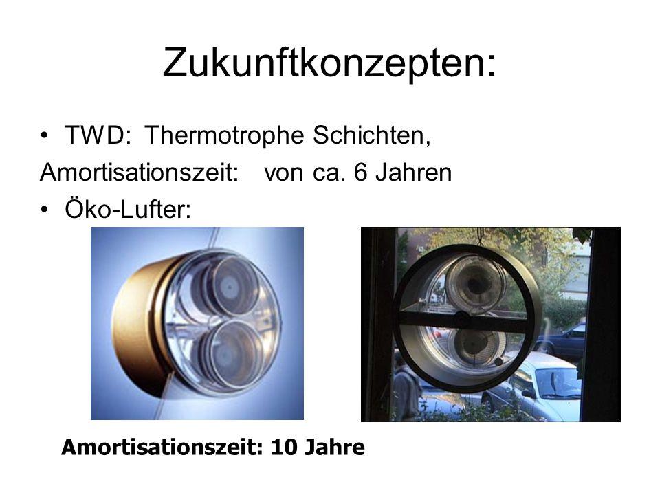 Zukunftkonzepten: TWD: Thermotrophe Schichten, Amortisationszeit: von ca. 6 Jahren Öko-Lufter: Amortisationszeit: 10 Jahre