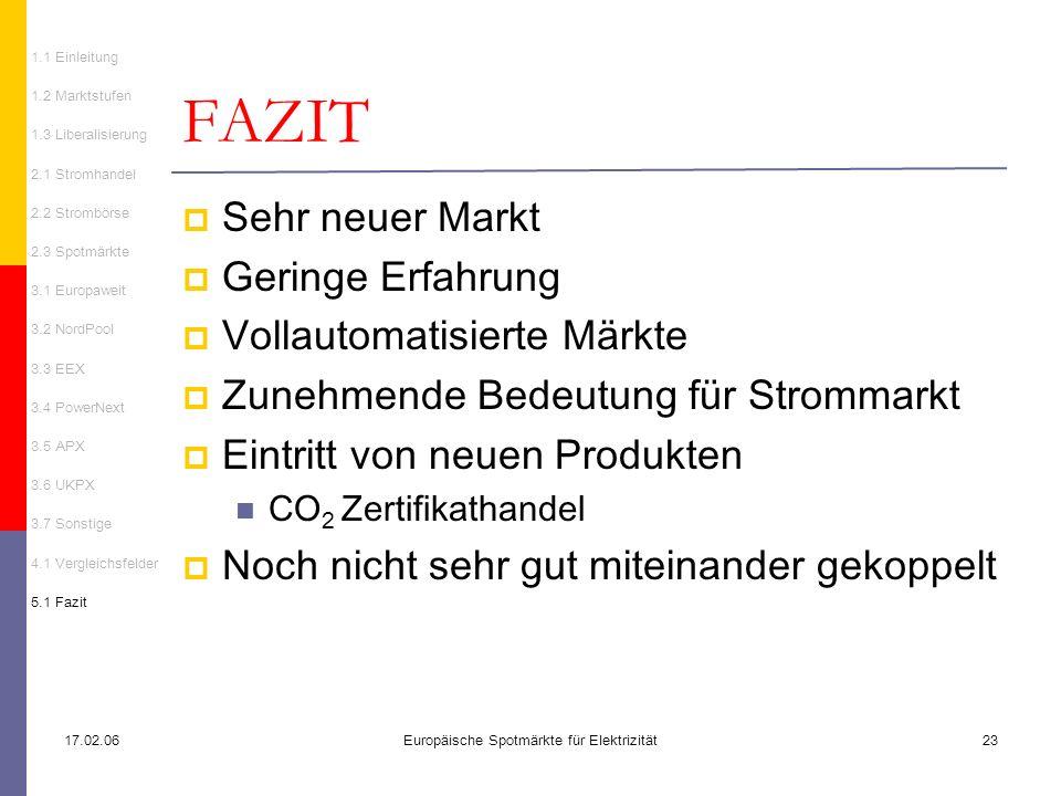 17.02.06Europäische Spotmärkte für Elektrizität23 FAZIT Sehr neuer Markt Geringe Erfahrung Vollautomatisierte Märkte Zunehmende Bedeutung für Strommar