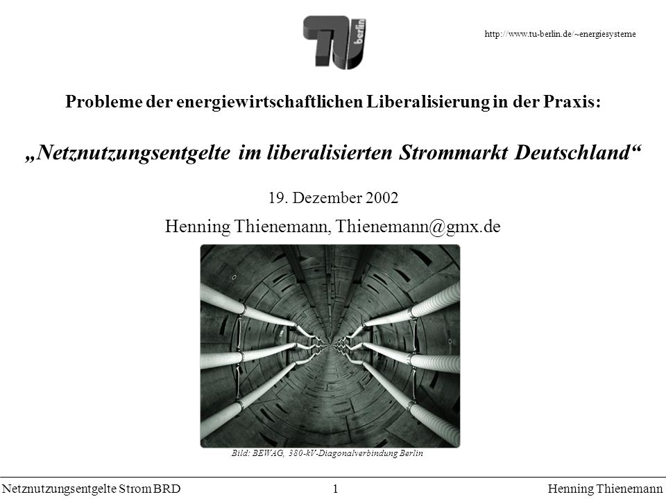 Netznutzungsentgelte Strom BRDHenning Thienemann 1 Probleme der energiewirtschaftlichen Liberalisierung in der Praxis: Netznutzungsentgelte im liberalisierten Strommarkt Deutschland 19.