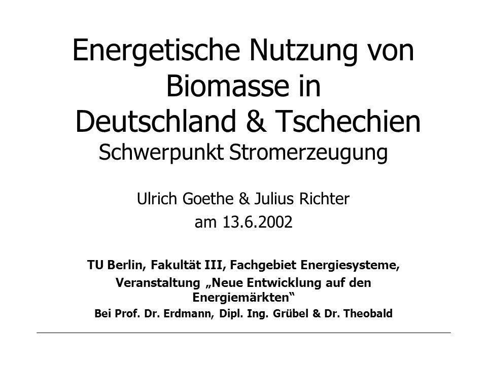Energetische Nutzung von Biomasse in Deutschland & Tschechien Schwerpunkt Stromerzeugung Ulrich Goethe & Julius Richter am 13.6.2002 TU Berlin, Fakultät III, Fachgebiet Energiesysteme, Veranstaltung Neue Entwicklung auf den Energiemärkten Bei Prof.