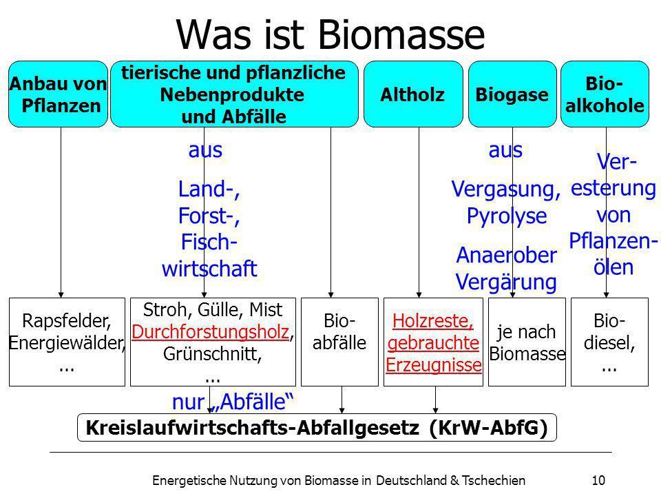 Energetische Nutzung von Biomasse in Deutschland & Tschechien10 Was ist Biomasse Anbau von Pflanzen Altholz tierische und pflanzliche Nebenprodukte und Abfälle Biogase Bio- alkohole Rapsfelder, Energiewälder,...