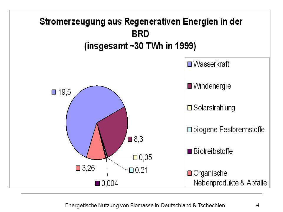 Energetische Nutzung von Biomasse in Deutschland & Tschechien4