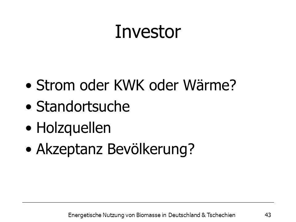 Energetische Nutzung von Biomasse in Deutschland & Tschechien43 Investor Strom oder KWK oder Wärme.