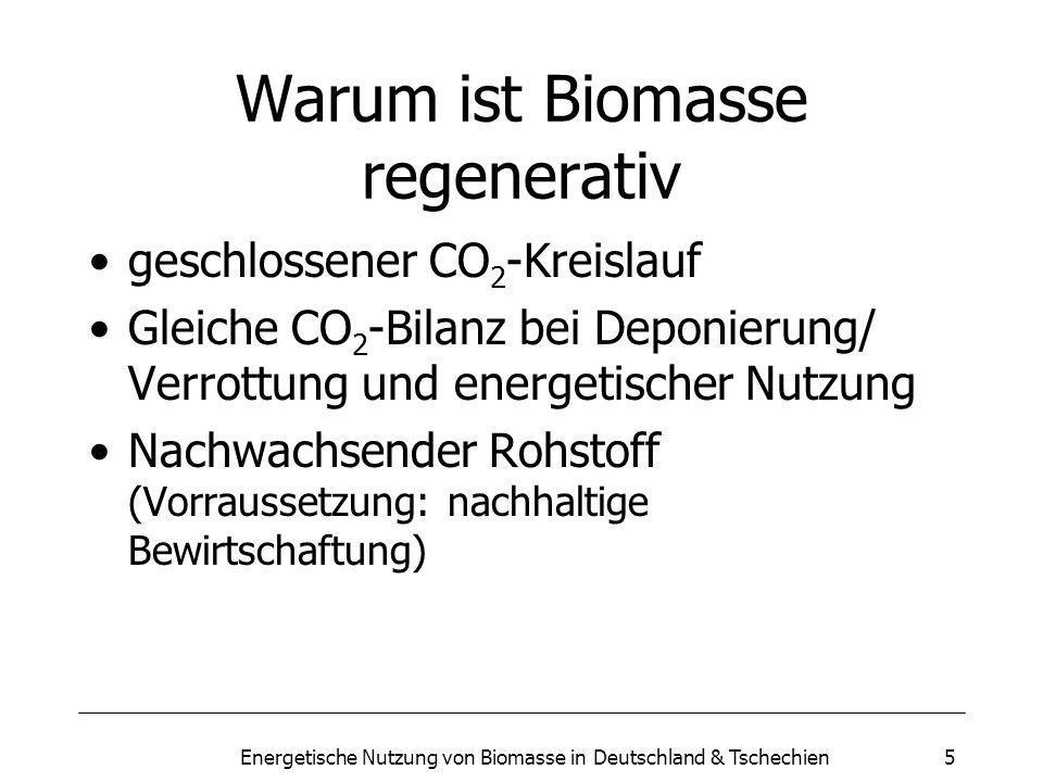 5 Warum ist Biomasse regenerativ geschlossener CO 2 -Kreislauf Gleiche CO 2 -Bilanz bei Deponierung/ Verrottung und energetischer Nutzung Nachwachsender Rohstoff (Vorraussetzung: nachhaltige Bewirtschaftung)