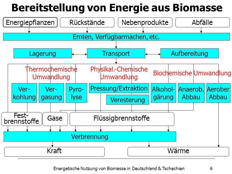 Energetische Nutzung von Biomasse in Deutschland & Tschechien6 Bereitstellung von Energie aus Biomasse Energiepflanzen RückständeNebenprodukteAbfälle Ernten, Verfügbarmachen, etc.