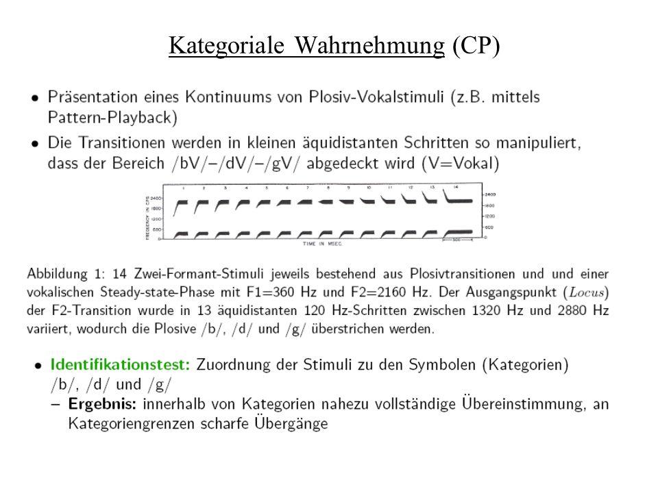Kategoriale Wahrnehmung (CP)