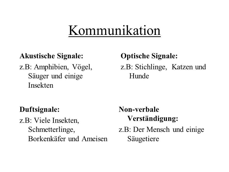 Kommunikation Akustische Signale: z.B: Amphibien, Vögel, Säuger und einige Insekten Optische Signale: z.B: Stichlinge, Katzen und Hunde Duftsignale: z