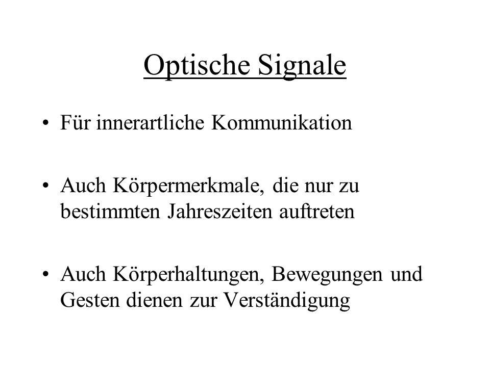 Optische Signale Für innerartliche Kommunikation Auch Körpermerkmale, die nur zu bestimmten Jahreszeiten auftreten Auch Körperhaltungen, Bewegungen un