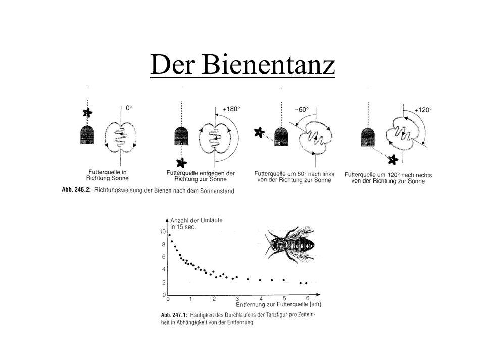 Duftsignale Pheromone: (Sexual-) Lockstoffe, die bei Artgenossen bestimmte Verhaltensreaktionen auslösen Mensch: künstlich hergestellte Pheromone zur Schädlingsbekämpfung