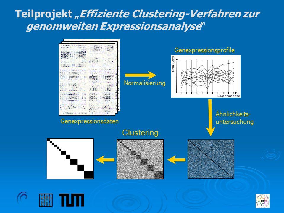 Teilprojekt Effiziente Clustering-Verfahren zur genomweiten Expressionsanalyse Genexpressionsdaten Genexpressionsprofile Ähnlichkeits- untersuchung No