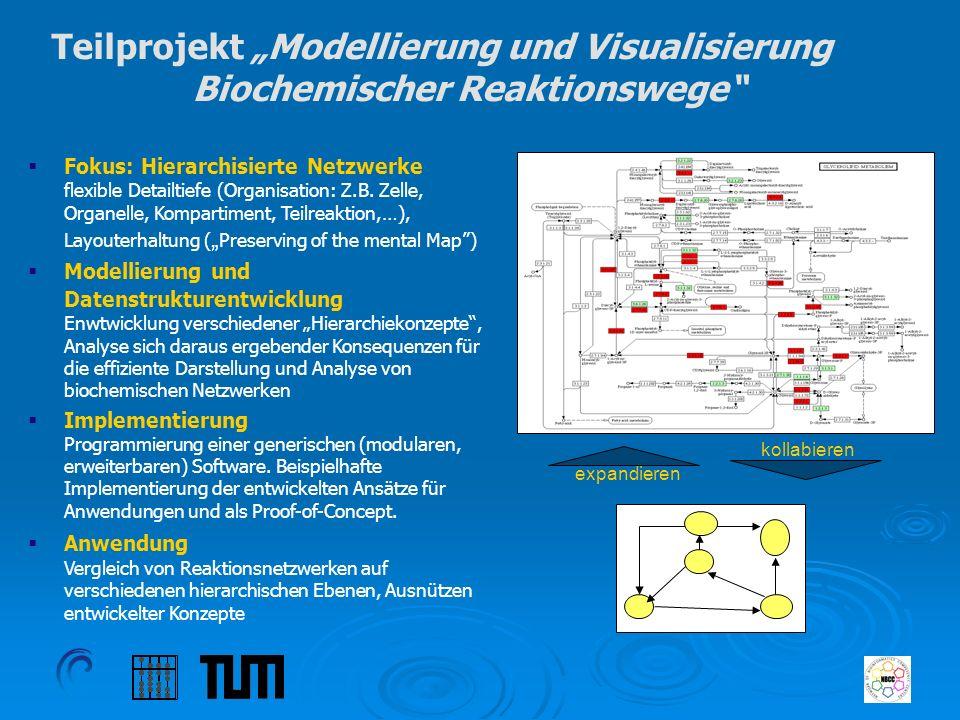 Teilprojekt Modellierung und Visualisierung Biochemischer Reaktionswege Fokus: Hierarchisierte Netzwerke flexible Detailtiefe (Organisation: Z.B. Zell