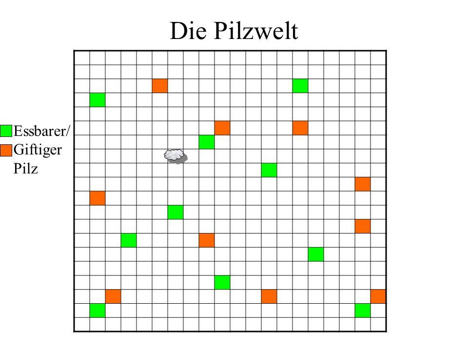 + Die Pilzwelt Essbarer/ Giftiger Pilz