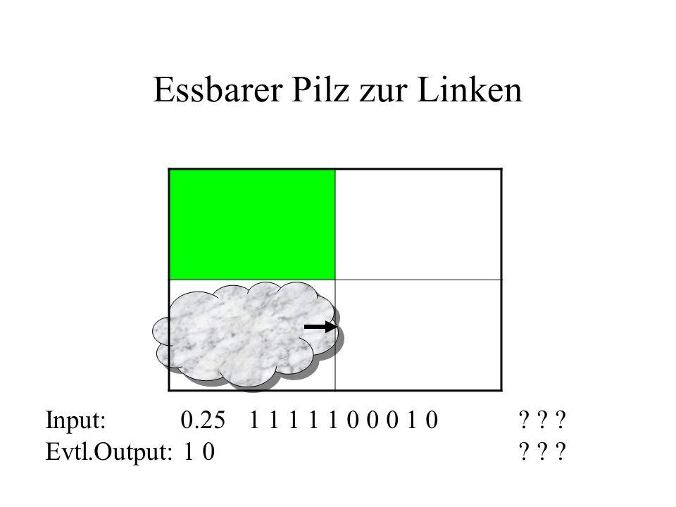 Essbarer Pilz zur Linken Input: 0.251 1 1 1 1 0 0 0 1 0? ? ? Evtl.Output: 1 0 ? ? ?