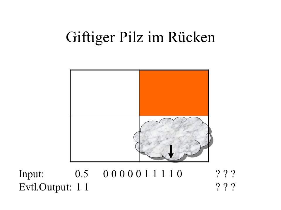 Unbekannter Pilz im Rücken Input: 0.50 0 0 0 0 0 0 0 0 0? ? ? Evtl.Output: ???